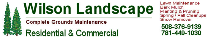 wilson landscape. Landscape services in needham ma, dover ma, millis ma and surrounding areas